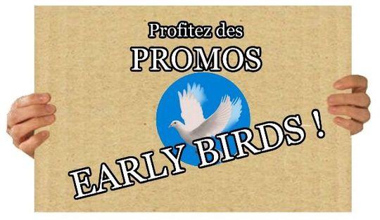 Bird_bleu-1427622664