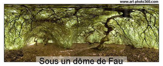 Sph-dome-monstre-1427740924