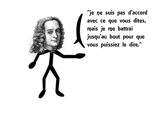 Voltaire-1427800434