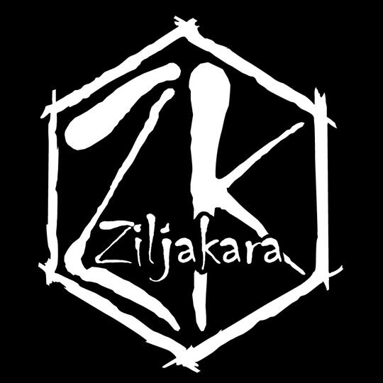 Logo_ziljakara-01-1427833811