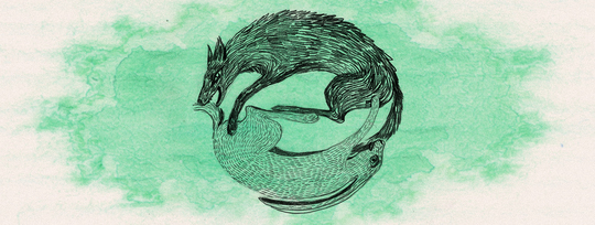 Wolf-frisst-hase_1-1427971965
