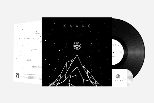 Montage-vinyle-kaang-1428066306
