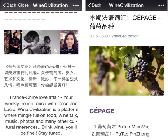 Winecivilization1-1428321936