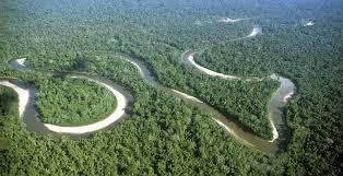 Amazonie-1428511710