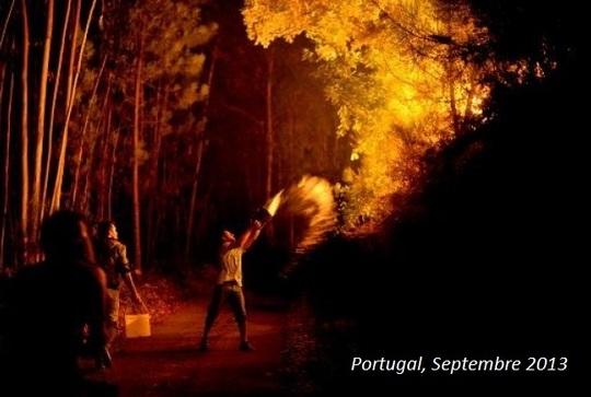 6296554-le-portugal-attend-des-renforts-pour-lutter-contre-les-incendies-1428528329