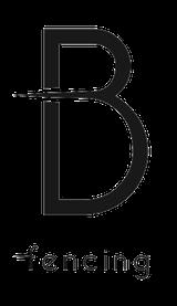 Bnoir-1428847802