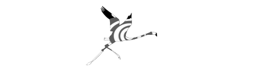 Logo-gris-1429281168
