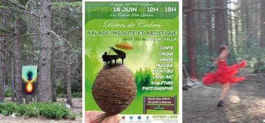 Danseuse_festival-1429635925