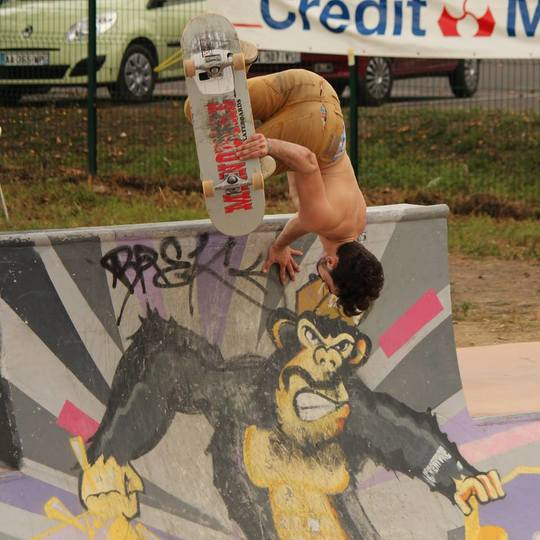 Skate-1430162571