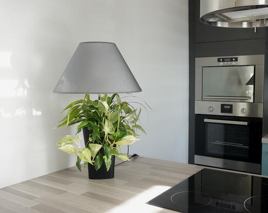 Limipouss_dans_la_cuisine-1-1430249804