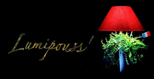 Lumipouss_madeinfrance-1430385302
