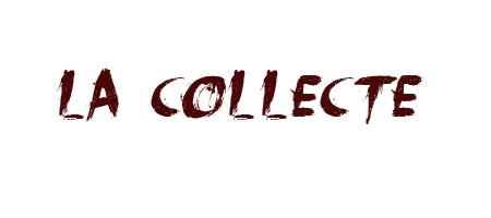 Collecte-1430917221