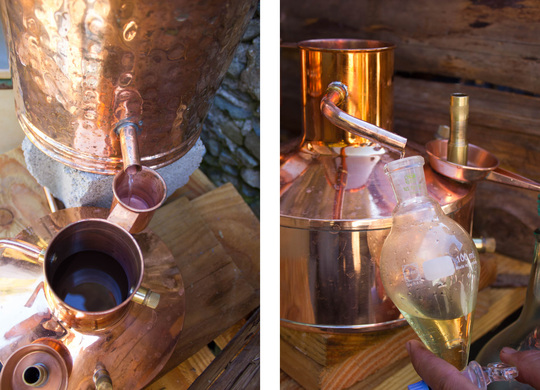 Distillation-1431350036