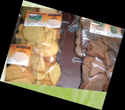Biscuit-1432055570