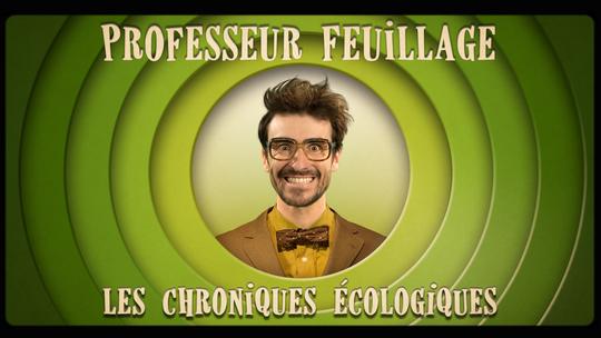 New_logo_du_professeur_feuillage_2015-1432114262