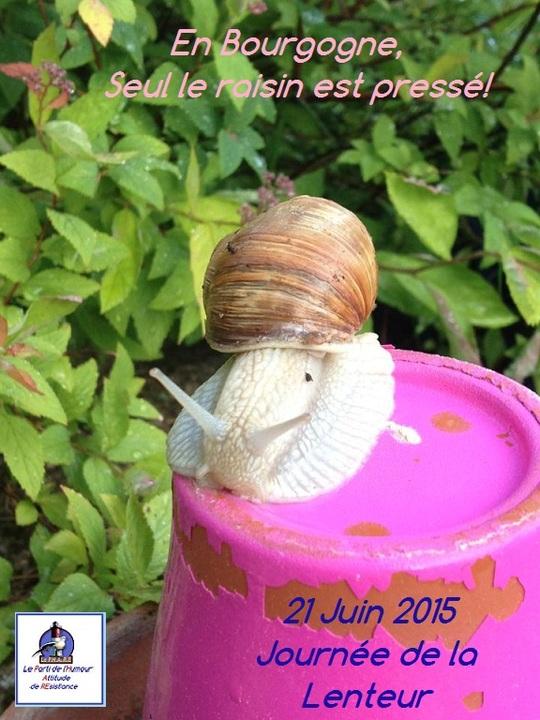 Journ_e_lenteur_11-1432223395