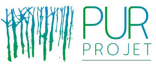 Purprojet-1432286524