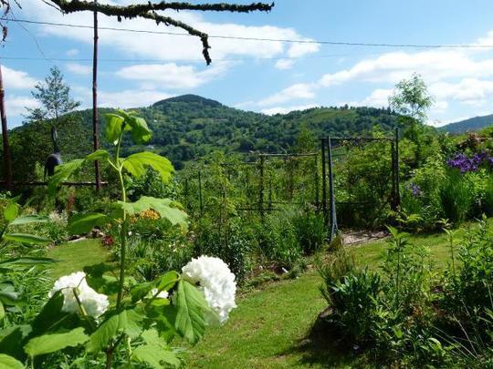 1387541218_jardin_182-1432913871