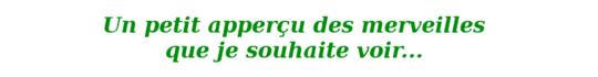 Un_petit_aper_u_des_merveilles_que_je_souhaite_voir-1433007432