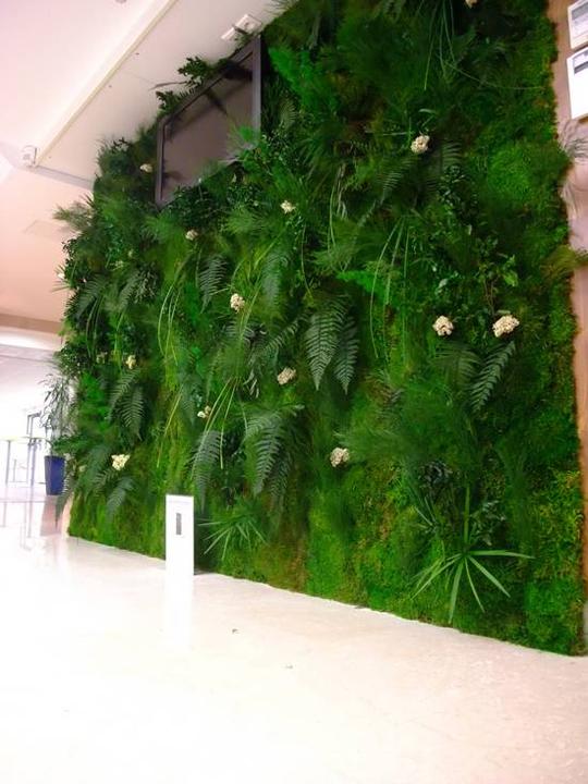 Mur_vegetal_2-1433083777