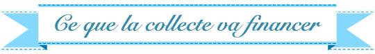 Titre-cequelacollecte-1433141616