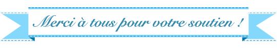 Titre-merci-a-tous-soutien-1433156356