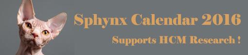 Banner_sphynx_calendar-1433179216