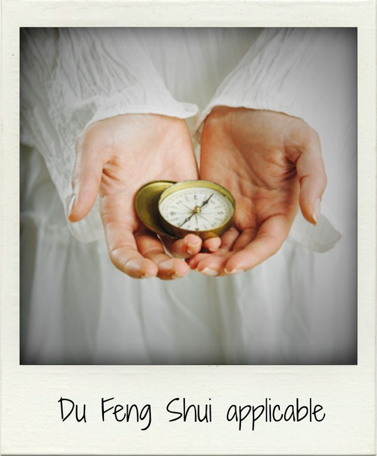 Du_feng_shui_applicable-1433269943