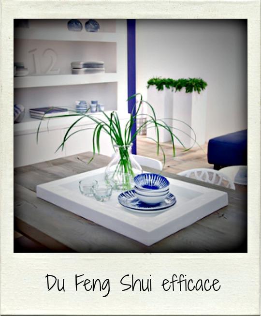 Du_feng_shui_efficace-1433269987