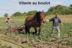 Vita_boulot-1433863603