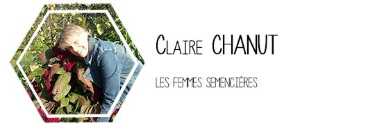 4-chanut-1434305534
