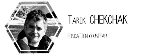 8-chekchak-1434305621