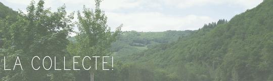 Lacollecte-1434705424