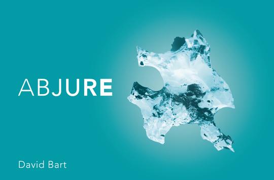 Abjure_de_david_bart-1434804596