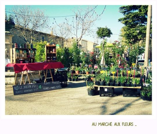 March__aux_fleurs-1434835217