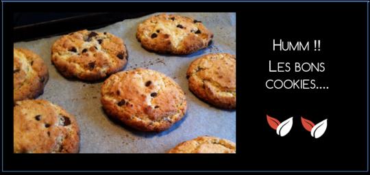 Super_cookies-1434982793
