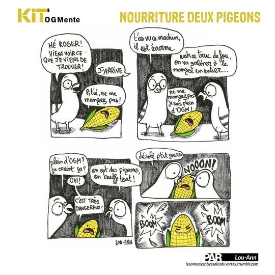 Kitinform-p14bis-1435448884