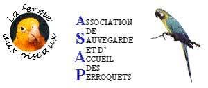 Asap-1435746162