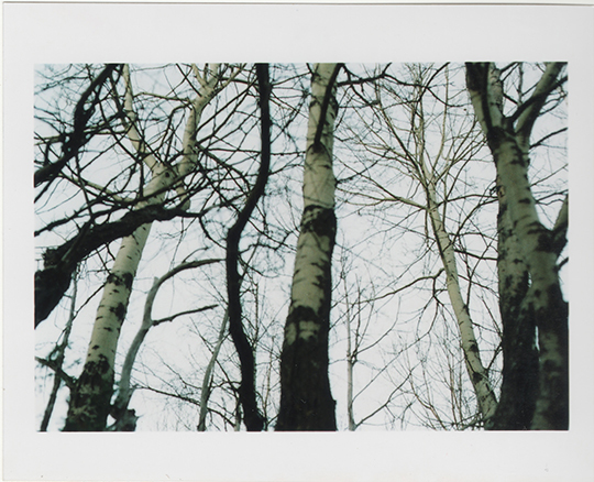 Scan_3_4-1436735117