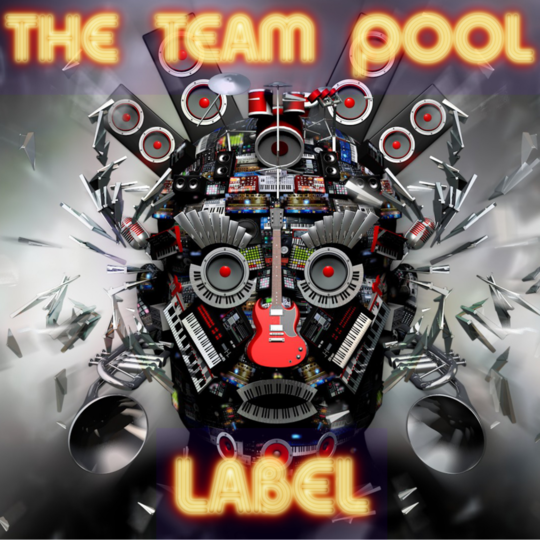 Teampoollabel-1024x1024-1439571850