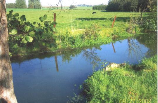 Le_ruisseau_longeant_le_jardin_didactique-1439649677