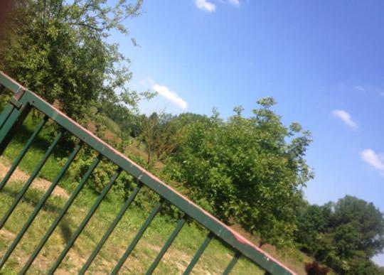 Entr_e_jardin-1439650077