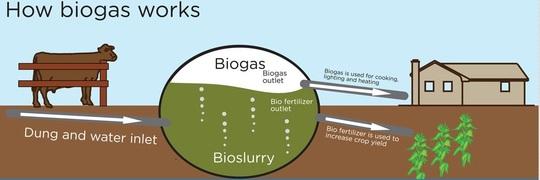Biogas-1442322780