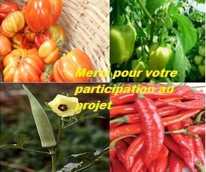 Photo_finale_projet-1442842636
