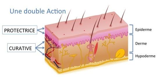 Double_action_peau-1443902718