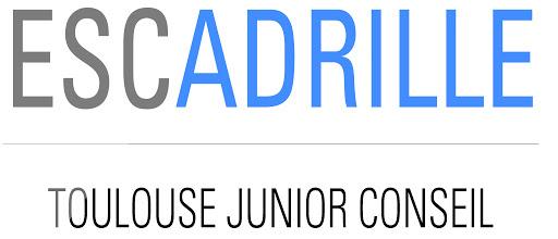 Logo-escadrille-1444053173