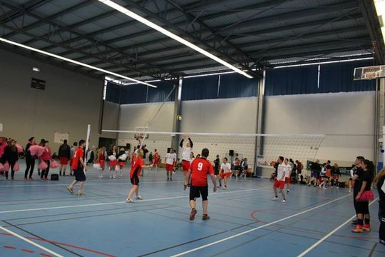 Volley-1444483469