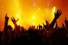 Foule-de-concert-10447765-1444890801
