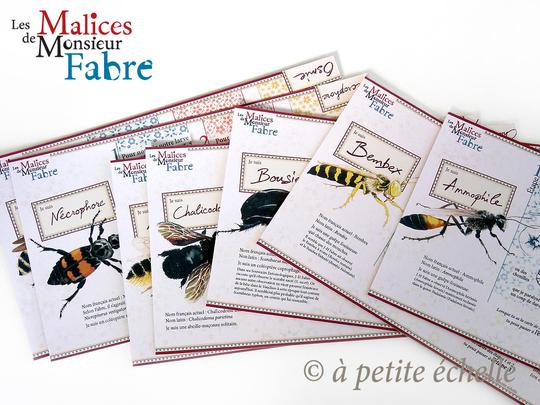 Les-malices-de-monsieur-fabre-plateaux-1444938657