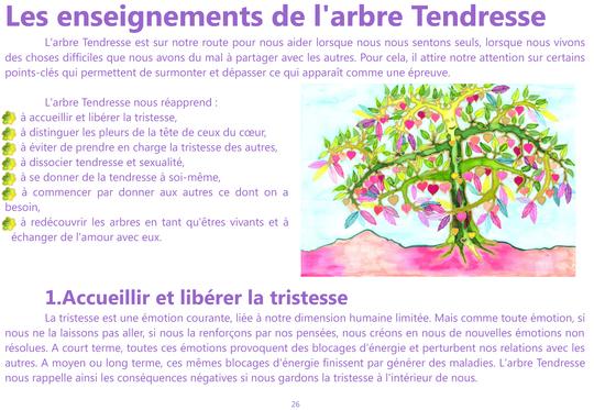 Extrait_pour_image_enseignement_arbre_tendresse-1445030103